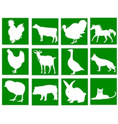 domestic animals in the green squares vector image