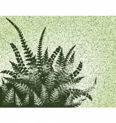 fern grunge vector image