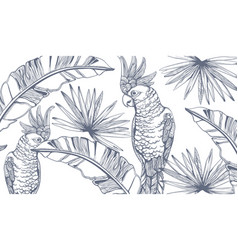 Parrot card line art exotic palm leaves decors vector