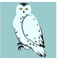 Snowy owl flat vector