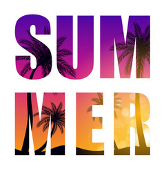 Summer word from beautifil palm tree leaf vector