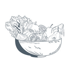 bowl with vegetables and fruits hand draw vector image vector image