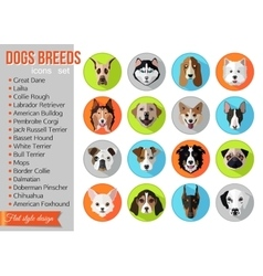 Set of flat popular breeds of dogs icons vector image vector image