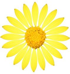 A yellow sunflower vector