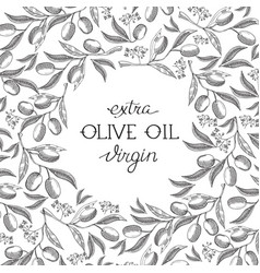 Abstract olive oil vintage template vector