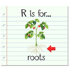 Flashcard letter R is for roots vector