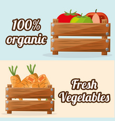 fresh vegetables organic with wooden box image vector image