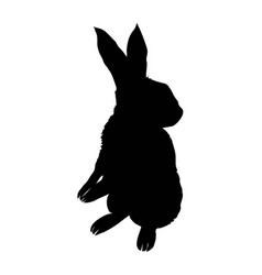 bunny rodent black silhouette animal vector image