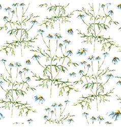 Watercolor chamomile herbs seamless pattern vector image