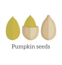 Pumpkin Seeds in Flat Design vector image vector image