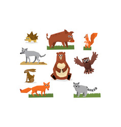 Colorful collection of funny forest animals fox vector