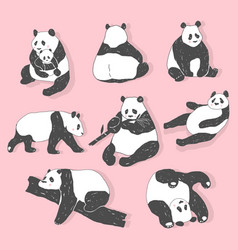 cute panda bear collection hand drawn vector image