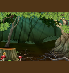 dark forest with stump tree vector image