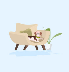 Funny beagle dog sitting in armchair sketch vector