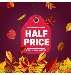 Half price label Exclusive offer vector