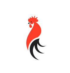 Red rooster with black tail vector