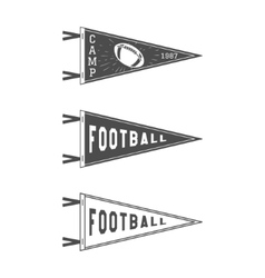 College Football Pennant Flags Set vector image vector image