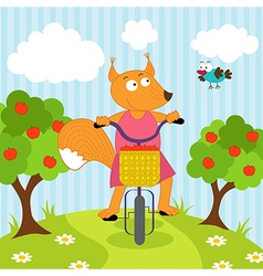 squirrel riding bicycle vector image