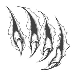 Claw scratch engraving tattoo vector