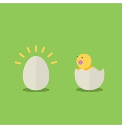 Cute cartoon little chicken vector image