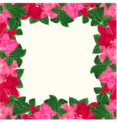 floral frame festive background with blooming vector image