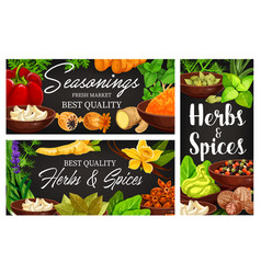 Food spice and herb banners cartoon condiments vector