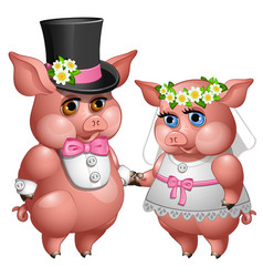 Marriage of bride and groom pigs in wedding suits vector