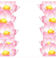 Pink indian lotus border vector