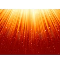 Snowflakes stars vector