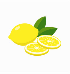 whole lemon and slices lemon gleen leaves vector image