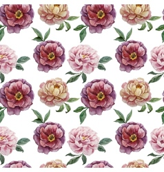 Beautiful watercolor pattern with peonies on white vector image vector image