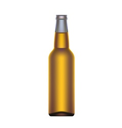 Beer bottle isolated on white background vector image