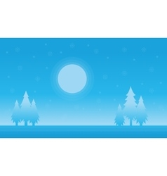Silhouette of spruce and moon Christmas scenery vector image vector image