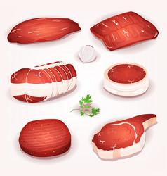 Beef meat set vector