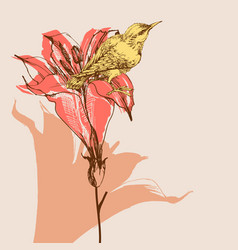 blooming lily flowers and cute bird greeting vector image