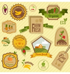 Eco labels fruits vector image