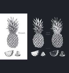 hand drawn pineapple fruits sketch set vector image