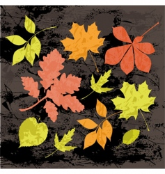 silhouettes of autumn leaves vector image vector image