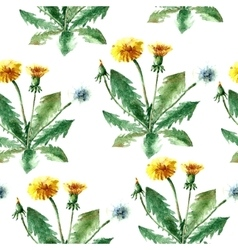 Watercolor dandelion herbs seamless pattern vector image