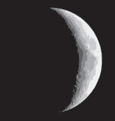 half moon vector image vector image
