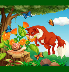 Background scene with red fox and insect in the vector