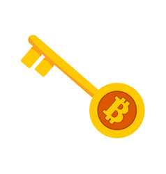 bitcoin golden unlock key graphic vector image