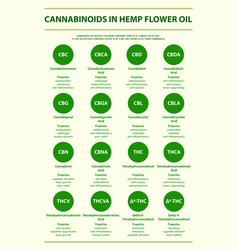 cannabinoids in hemp flower oil with structural vector image
