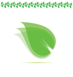 leaf green vector image