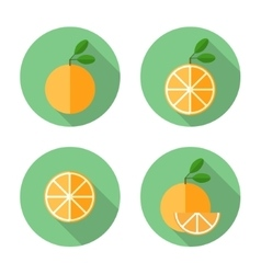 Orange Flat Icon vector image