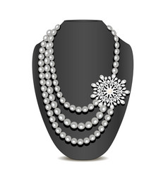 pearl necklace and brooch and ornament vector image