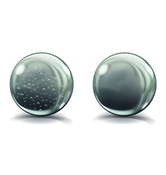Two big gray glass spheres vector