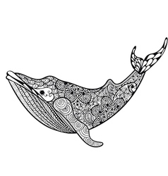 Zentangle stylized Sea Whale Hand Drawn isolated vector
