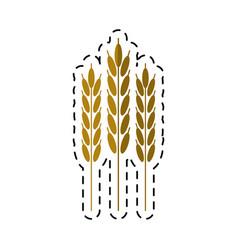 Cartoon harvesting wheat ears vector