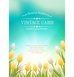 Summer card with white tulips vector image
